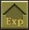 EXP.jpg